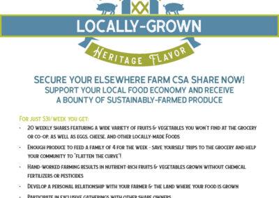 Elsewhere Farm Promo Poster Design